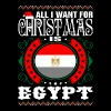 All I Want For Christmas Is Egypt - Men's Premium T-Shirt