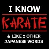 I know karate and two other japanese words Women's T-Shirts - Men's Premium T-Shirt