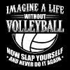 Funny Volleyball Player Shirt Imagine Life - Men's Premium T-Shirt