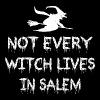 Not Every Witch Lives In Salem - Men's Premium T-Shirt