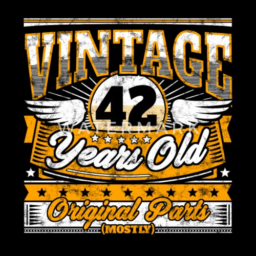 Funny 42th Birthday Shirt Vintage 42 Years Old Mens Premium T