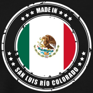 MADE IN SAN LUIS RÍO COLORADO - Men's Premium T-Shirt