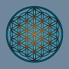 Flower of life, sacred geometry, spirituality,  - Men's Premium T-Shirt