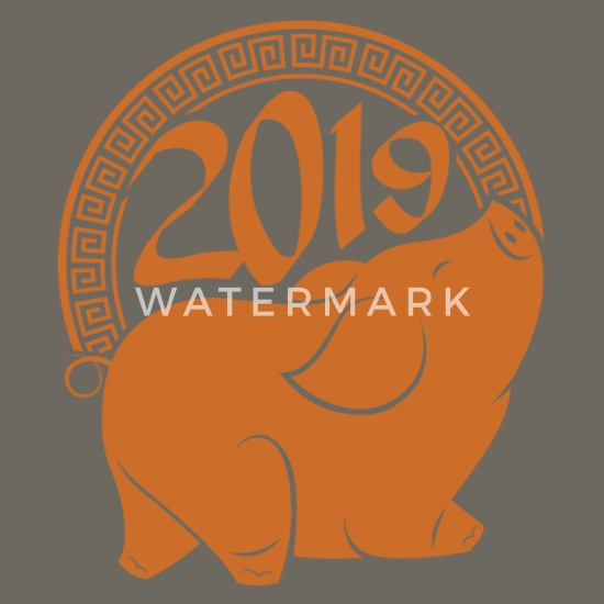 2019 Piglet pig horoscope Chinese New Year gift Men's Premium T