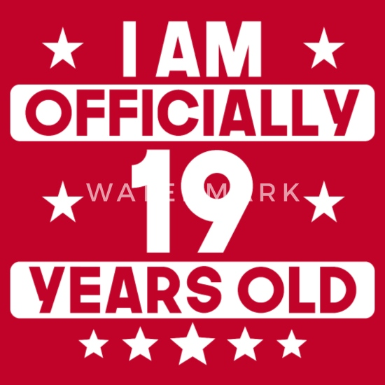 I Am Officially 19 Years Old 19th Birthday Men's Premium T