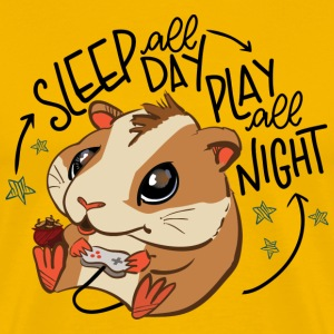 Sleep all day - Play all night
