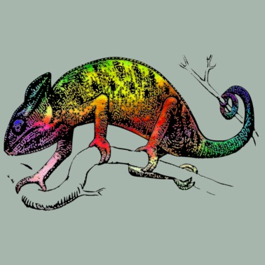 colorful abstract chameleon rainbow colors by creative matrix
