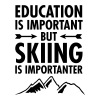 Education Is Important But Skiing Is Importanter - Women's Premium T-Shirt