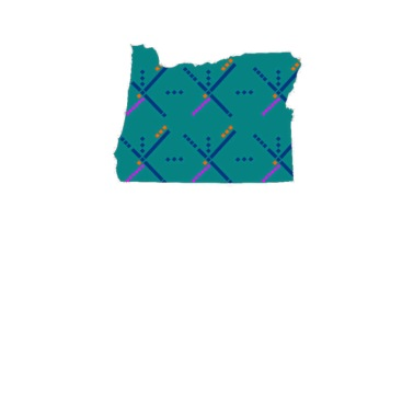Carpet Women's Tri-Blend V-Neck T-Shirt