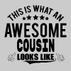 THIS IS WHAT AN AWESOME COUSIN LOOKS LIKE - Women's Premium T-Shirt