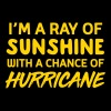 I'm a ray of sunshine with a chance of hurricane - Women's Premium T-Shirt