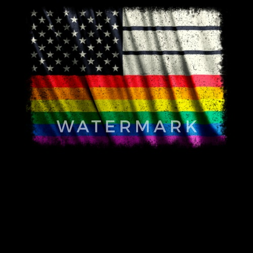 3f0672a9ce1 Lgbt american flag shirt gay pride shirt women premium shirt spreadshirt  jpg 500x500 American flag lgbt