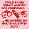 Santa Washed My Mouth Out With Soap - Women's Premium T-Shirt