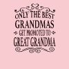 Great Grandma - Women's Premium T-Shirt
