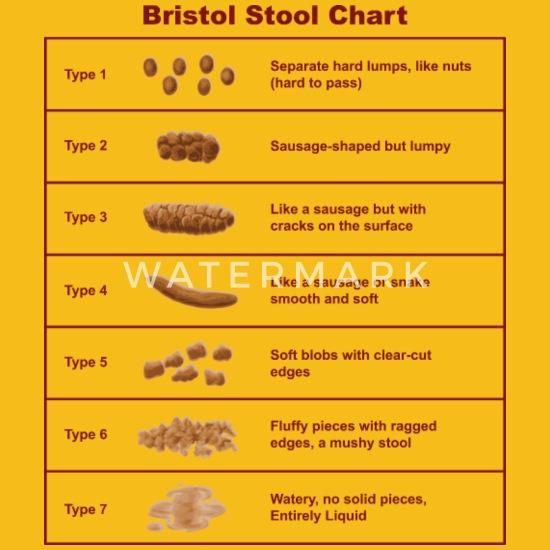 Bristol Stool Chart / Scale Women's Premium T-Shirt