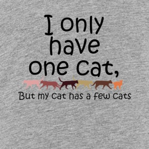 I only have one cat but my cat has a few cats - Kids' Premium T-Shirt