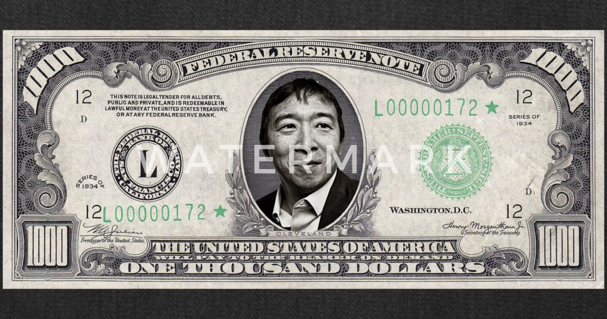 Andrew Yang Collectible United States Novelty 2020 Dollar Bill with Case