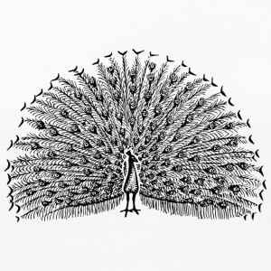Peacock Illustration - Women's Premium Long Sleeve T-Shirt
