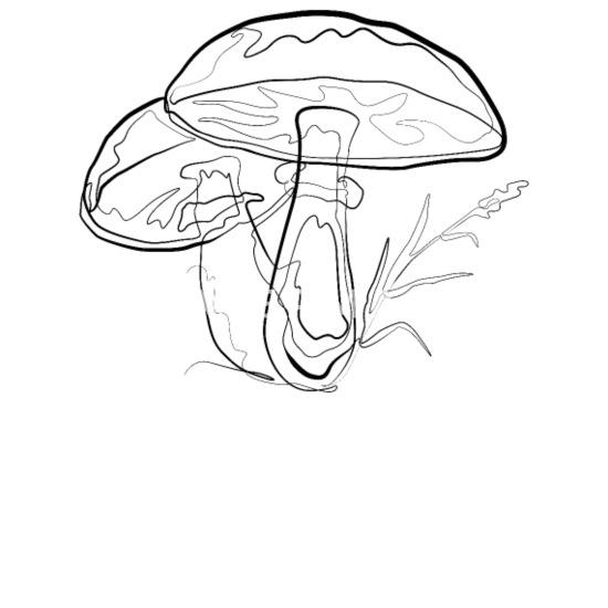 Mushrooms One Line Drawing Pillowcase 32 X 20 White