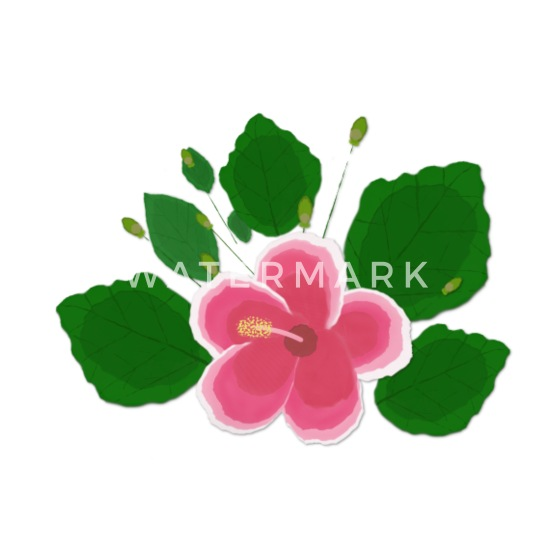 Pink And White Hibiscus Flower Pillowcase 32 X 20 Spreadshirt