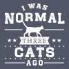 I Was Normal 3 Cats Ago - Women's Roll Cuff T-Shirt