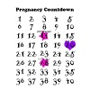 Pregnancy Countdown - Women's Maternity T-Shirt