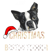 boston terrier christmas is better with a boston - Boston Terrier Christmas