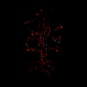 Gnarly Oak Tree Heart Tattoo Enamel Mug Spreadshirt