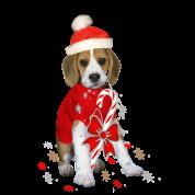 beagle puppy christmas baby bodysuit - Christmas Beagle