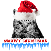 Funny Neon Christmas Cat Santa Hat Gift Ideas Trucker Cap White Black