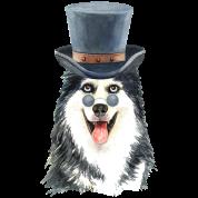 0da15cb8708 Siberian husky with sunglasses and top hat Women's Organic T-Shirt ...