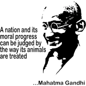 Mahatma Gandhi Animal Rights