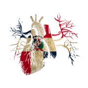 Dominican Republic Flag in Real heart Men's Jersey T-Shirt