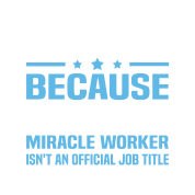 finance manager by bushking spreadshirt