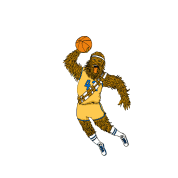 Chewbacca basketball dunk