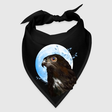 Black-chested snake eagle  - Bandana