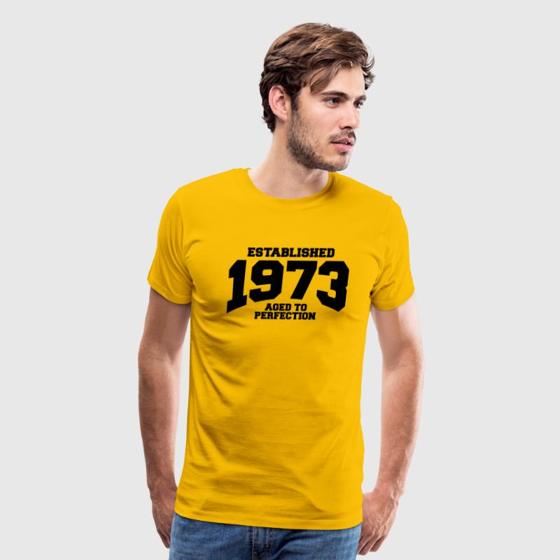 aged to perfection established 1973 T-Shirts - Men's Premium T-Shirt