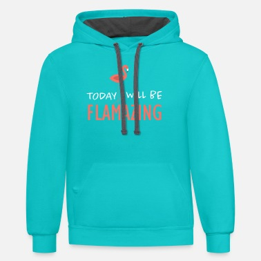 Flamingo Flamingo - Unisex Two-Tone Hoodie
