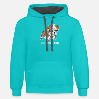 Little Bully - Unisex Two-Tone Hoodie