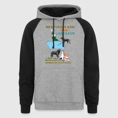 Newfoundland and Labrador dogs - Colorblock Hoodie
