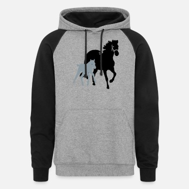Mare mare with foal - Unisex Colorblock Hoodie