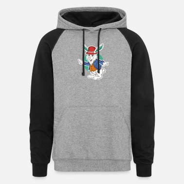 Funny Rabbit Cute Funny Rabbit - Unisex Colorblock Hoodie