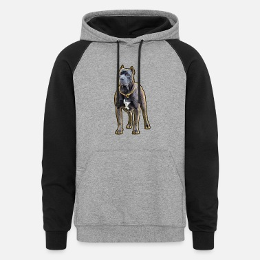 Pitbull The Protector - Guard Dog Lovers Apparel - Unisex Colorblock Hoodie