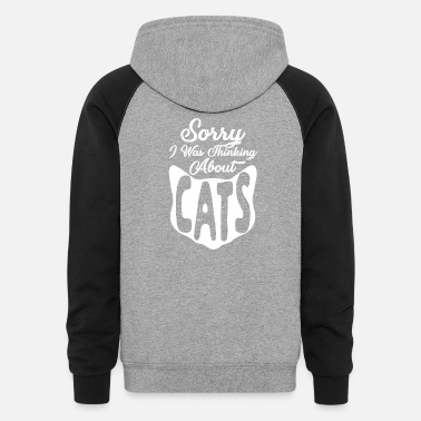 Catfish Thinking about Cats - Unisex Colorblock Hoodie