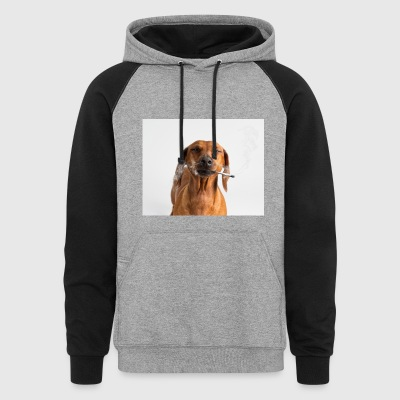 Canna Dog - Colorblock Hoodie