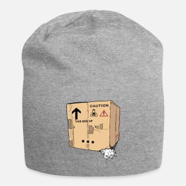 Schrodinger cat box - Beanie