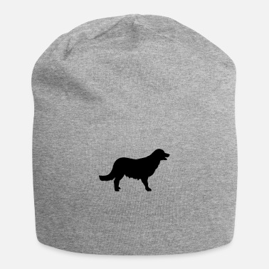 Golden Retriever Golden Retriever - Beanie