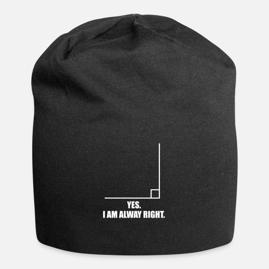 Calculus Caps - Math Teacher Mathematics Nerd - Beanie black