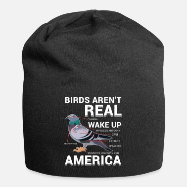 Bird Conspiracy Pigeons Funny - Beanie