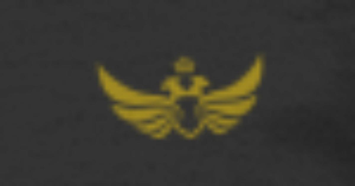 4036a8af Imperial Eagle Men's 50/50 T-Shirt | Spreadshirt